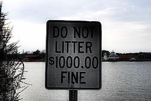 Litter Camping Fine