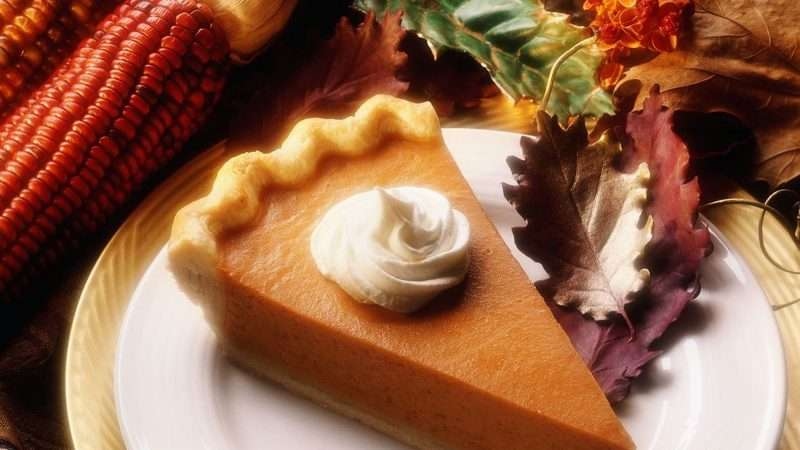 A perfect slice of pumpkin pie topped with a dollop of fluffy whipped cream sits on a white plate with a golden rim. The plate is surrounded with fall seasonal decor, including reddish-brown maize and colorful leaves.
