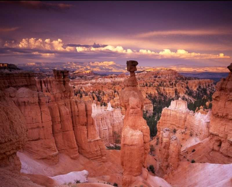A magnificent rock formation called Thor's Hammer is seen at sunset at Bryce Canyon National Park. The rocks are striking red and pink colors against the dark purple sky.