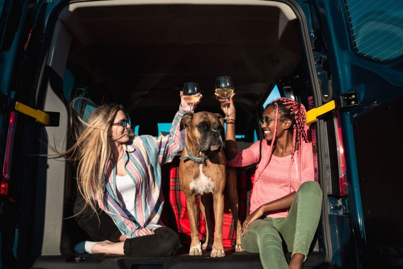 Two young women toast with wine glasses while sitting in the back of a Class B motorhome. A large brown dog stands between them.