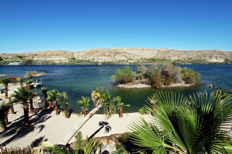 A literal desert oasis, Colorado River Oasis Resort is surrounded by mountains and desert but within this campground you'll find lush green palms and other plants.