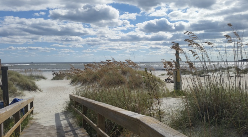 A wooden walkway leads to the sandy beach of Tybee Island at River's End Campground & RV park. Tall beach grass lines the walkway and patches the dunes. Rolling waves line the water.